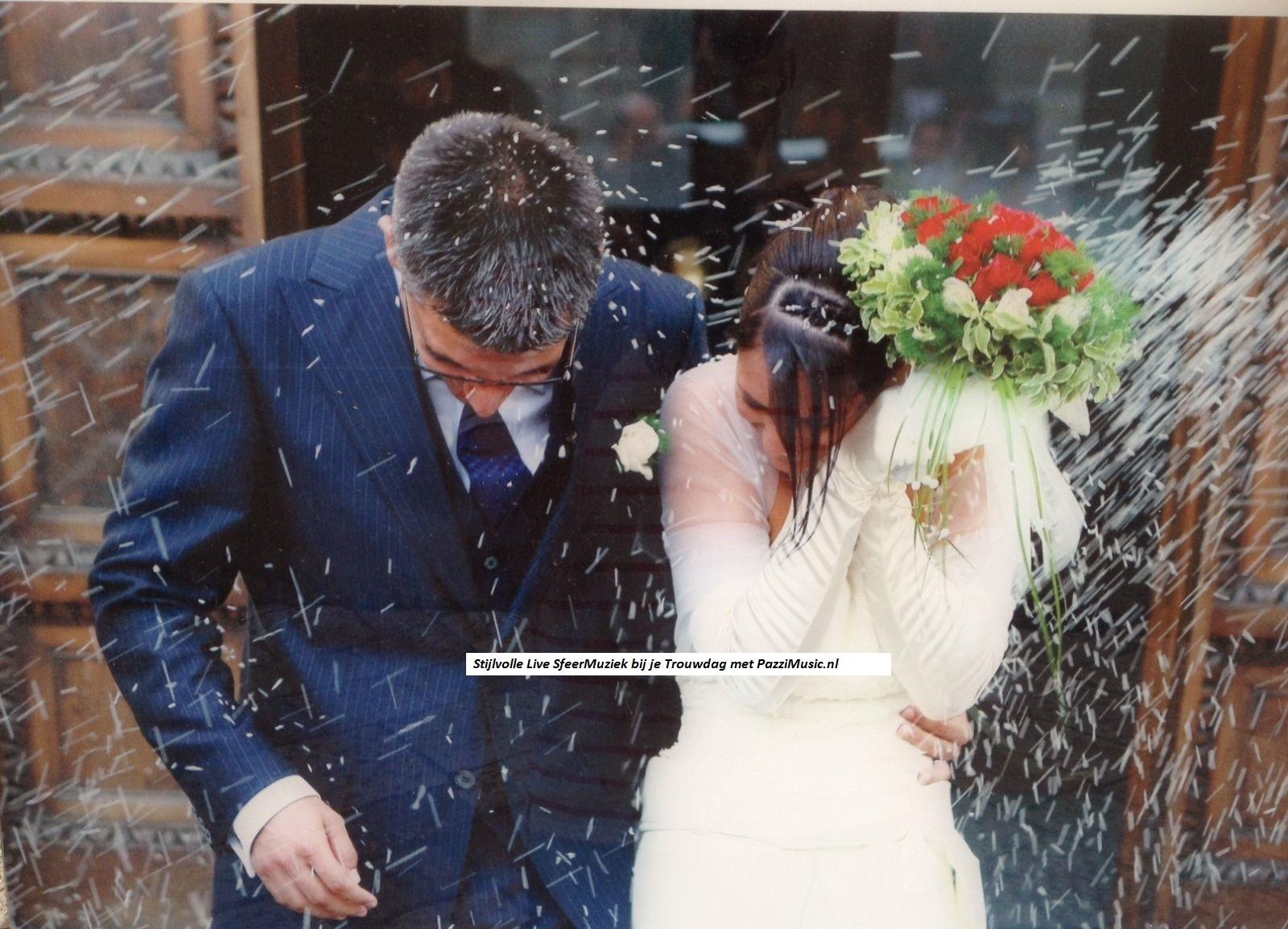 Sfeervolle Bruiloft Trouwdag Huwelijksdag Ceremonie Live
